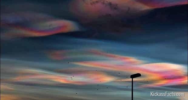 Polar-Stratospheric-Cloud