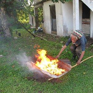 Poison ivy burning