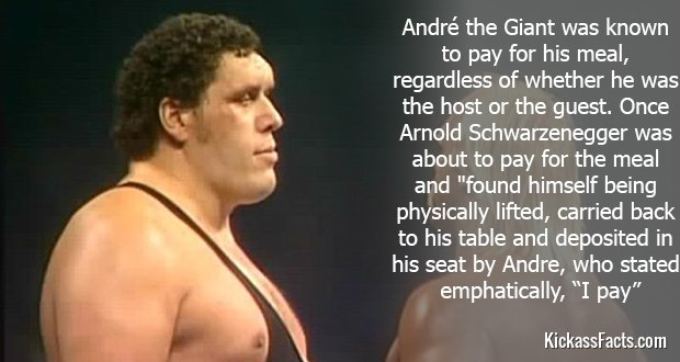 110André-the-Giant