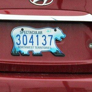 Polar bear Licence plates