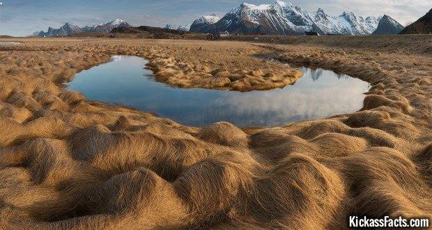 13 Lofoten Islands