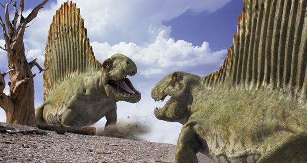 02 Dimetrodon (Mammal like reptile)