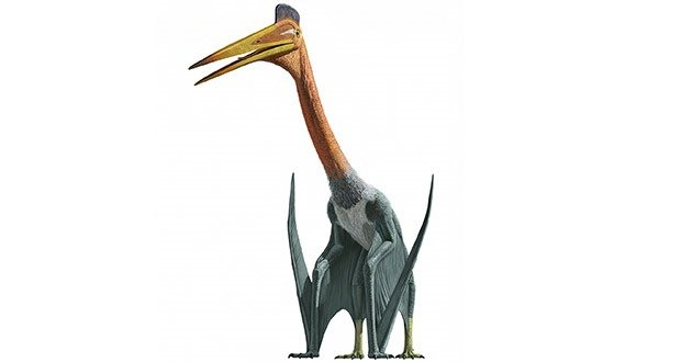 06 Quetzalcoatlus (Pterosaur)