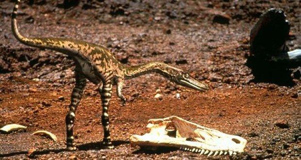 07 Triassic