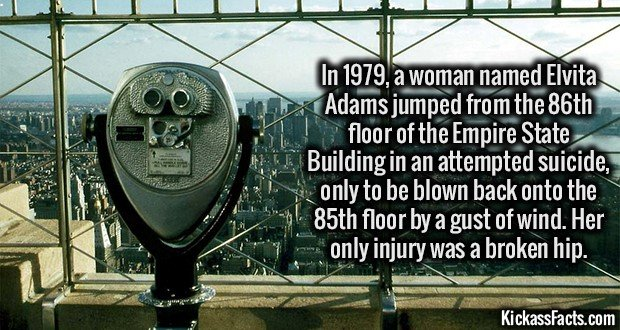 1772 Empire State Building Suicide