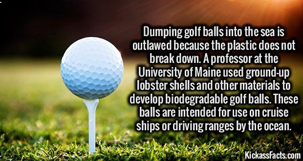 1778 Shellfish Golf Ball