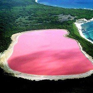 Australia pink lake