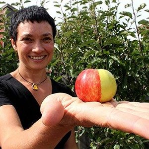 Half green half red apple